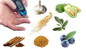 best herbs for diabetes